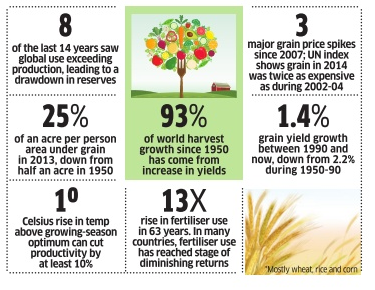 Grain Facts