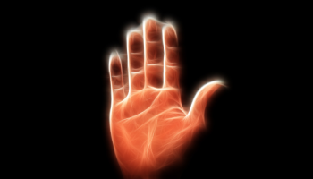 The Fortune In Your Palm | wealthymatters
